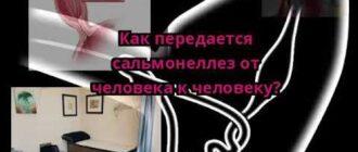 salmonellez-ot-cheloveka-k-cheloveku